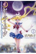 Pretty Guardian Sailor Moon1