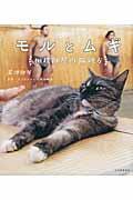 モルとムギ / 相撲部屋の猫親方