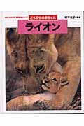 ライオン / どうぶつの赤ちゃん