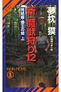 新・魔獣狩り 12(完結編 倭王の城 上) / 長編超伝奇小説