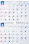 E91 エコカレンダー壁掛B5×2面 2019