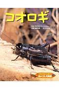 虫のくらし写真館 13 / ドキドキいっぱい!