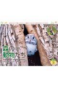 森の動物たち Tiny Story in the Forestsカレンダー