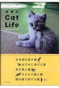 世界のcat life / Everyday with cats