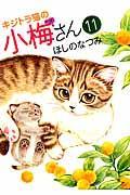 キジトラ猫の小梅さん 11