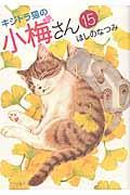 キジトラ猫の小梅さん 15