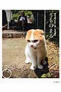 うちのまる / 養老孟司先生と猫の営業部長