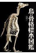 鳥の骨格標本図鑑