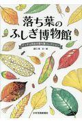 落ち葉のふしぎ博物館 / ゲッチョ先生の落ち葉コレクション