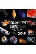 深海生物図鑑カレンダー 2019