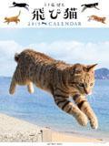 飛び猫 2019年カレンダー
